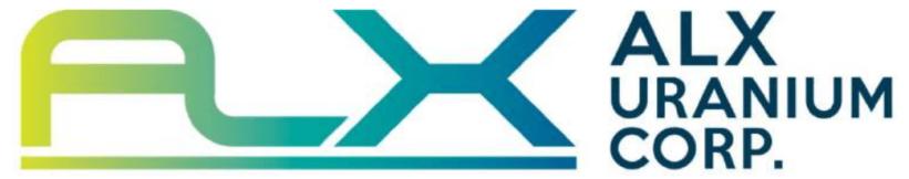 ALX Logo